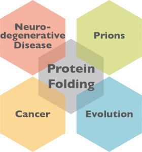 ProteinFolding